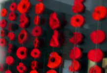 Rememberence Day Poppies