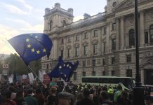 People's Vote March London image by Vicky Howse