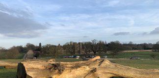 Knole Park Kent