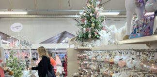 Ladies choose Christmas decorations at Polehill garden centre
