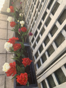 Mediterranean raised planters with tulips