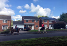 Redditch England: 'detatched homes and horses' photo by A Howse